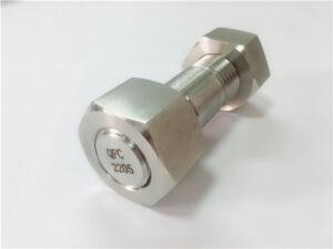 No.75-Висококачествен дуплекс 2205 болт от неръждаема стомана